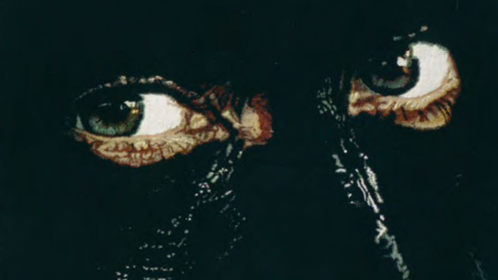 A close-up of a rug design shows two green eyes looking out of a blackened face.
