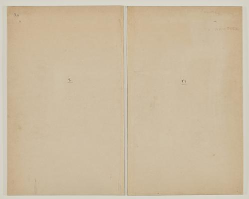 "Two plain pages, each with minor marks. One has ""XIII"" on the top left. Both have two tiny ink marks on the centre of the page."